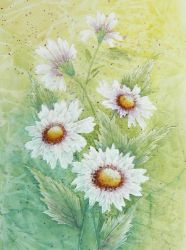 MUD Daisies Tutorial 227